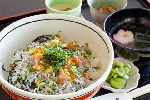 鎌倉のごはんやさん石渡の朝獲り釜揚げしらす丼