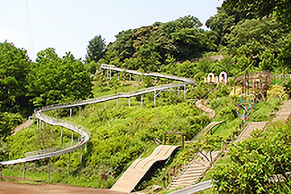 金沢動物園の園内
