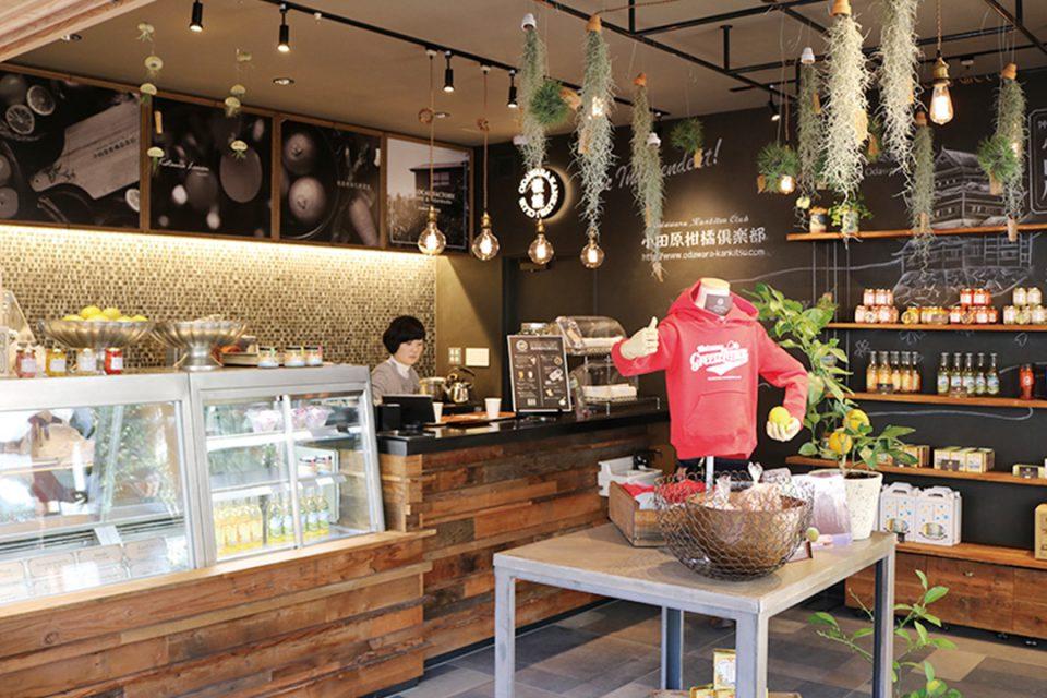 cafe小田原柑橘倶楽部の店内
