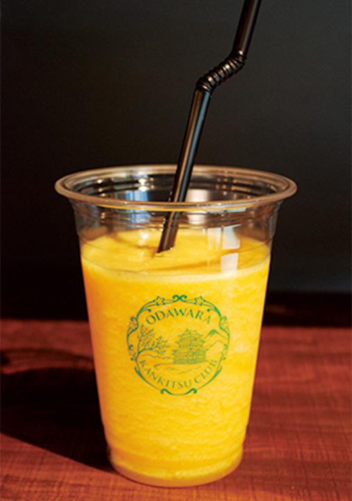 cafe小田原柑橘倶楽部のフローズンスクィーズ