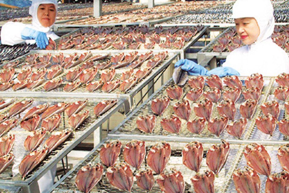干物の製造過程