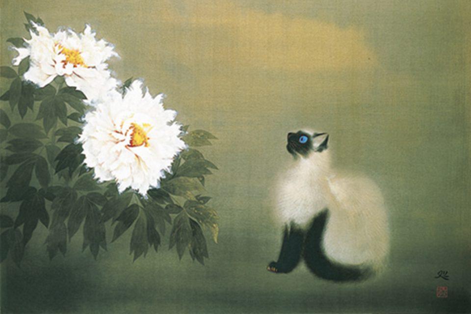 日本画家加山又造の猫