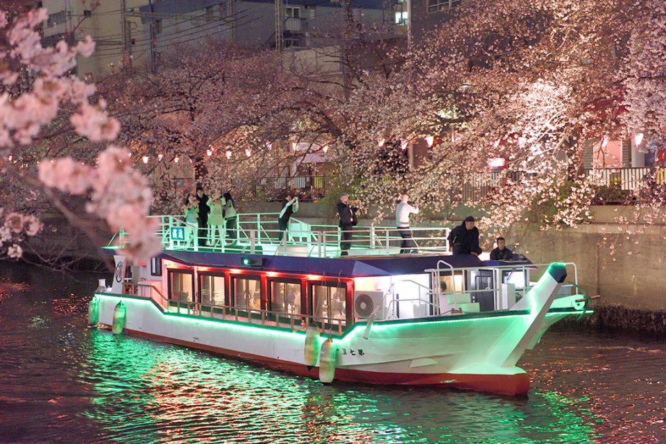 屋形船濱進と夜桜