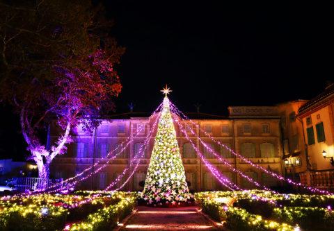 星の王子さまミュージアムのクリスマスイルミネーション