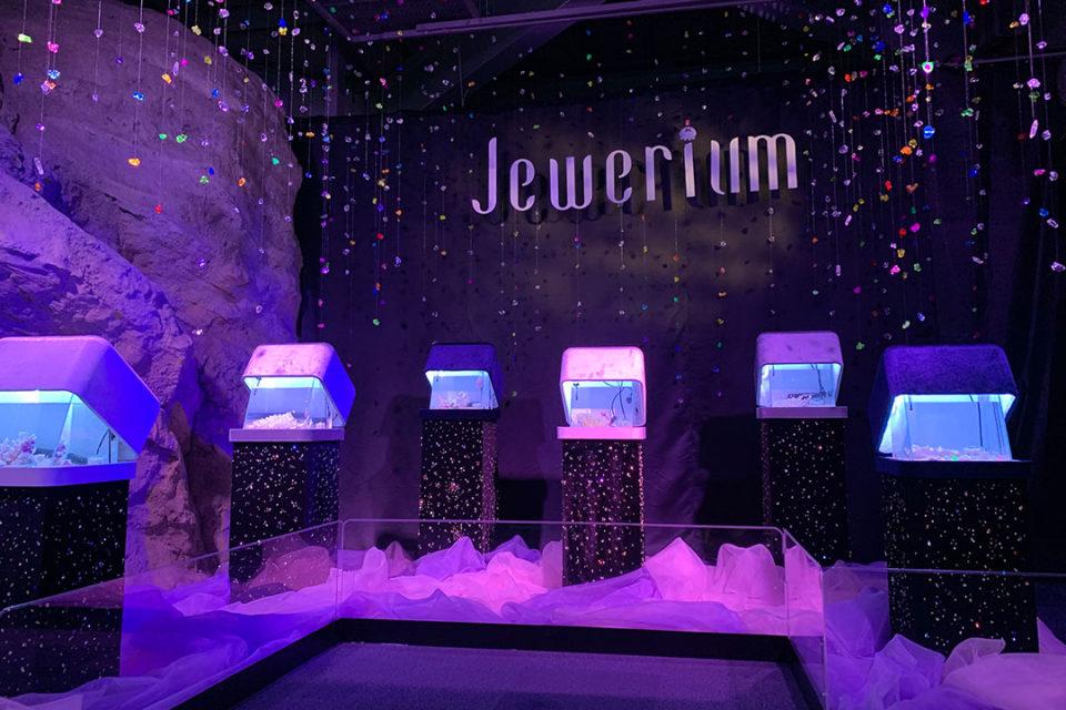 Jeweriumの特別水槽